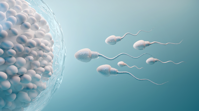 Zusammenhang zwischen Unfruchtbarkeit und vaginaler Flora