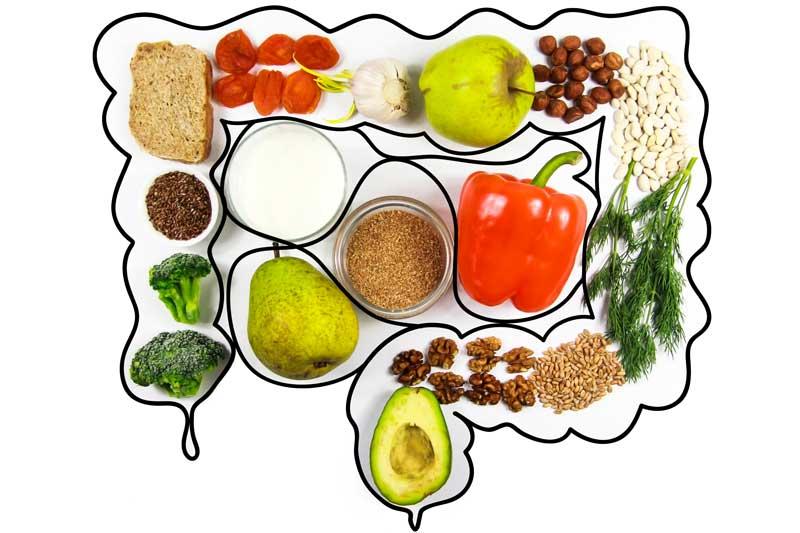 Darm mit Obst und Gemüse - gesunde Ernährung